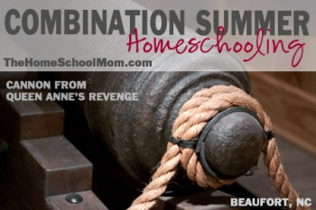TheHomeSchoolMom: Combination Summer Homeschooling