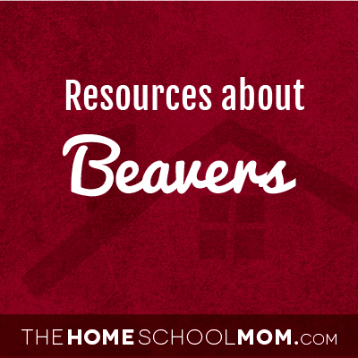 Resources for studying about beavers