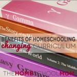 Benefits of Homeschooling: Flexibility When a Curriculum Doesn't Work