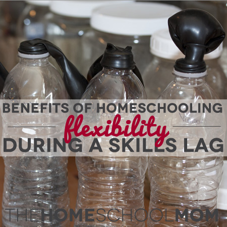 TheHomeSchoolMom - Benefits of Homeschooling: 8 Ways for Later Readers to Build Knowledge