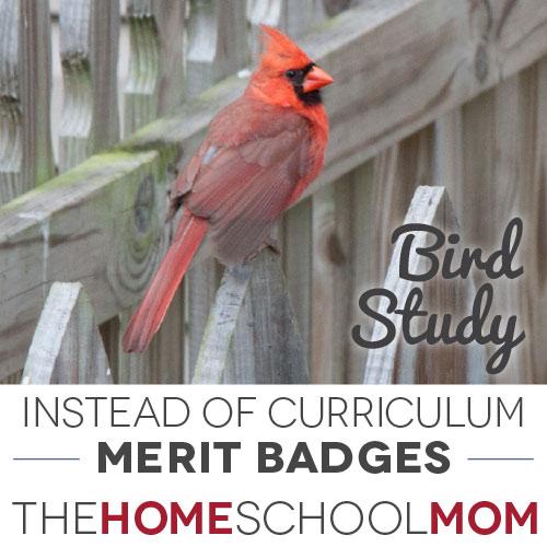 Free Unit Studies: BSA Merit Badges