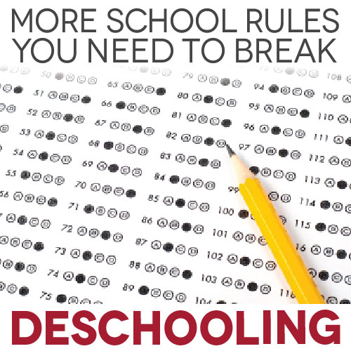 TheHomeSchoolMom Blog: Deschooling - More School Rules You Need to Break