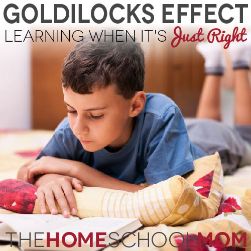 TheHomeSchoolMom Blog: Learning when it's