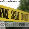 TheHomeSchoolMom: Homeschooling for Safety