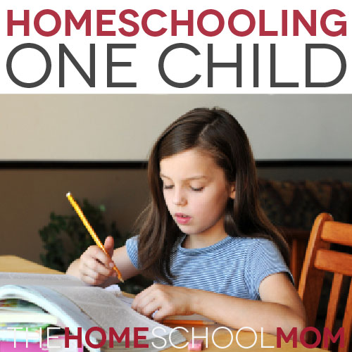 TheHomeSchoolMom Blog: When you are homeschooling only one child