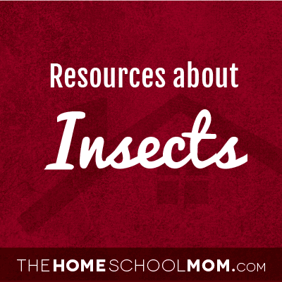 Homeschool resources about insects