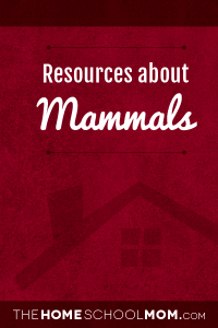 Homeschool resources for studying about mammals