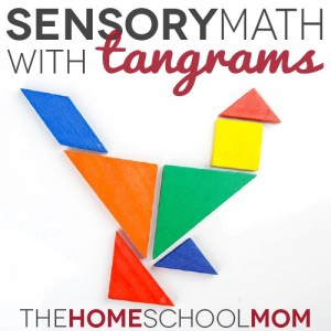 TheHomeSchoolMom Blog: Math Sensory Play with Tangrams