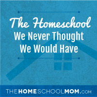 The Homeschool We Never Thought We'd Have