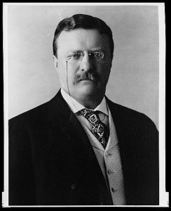TheHomeSchoolMom President Resources: Theodore Roosevelt