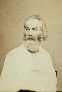 Walt Whitman, circa 1862; Photo by Mathew Brady Credit: Library of Congress Prints and Photographs Division