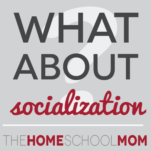 TheHomeSchoolMom: What About Socialization?