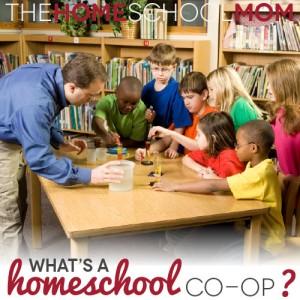TheHomeSchoolMom Blog: What is a homeschool co-op?